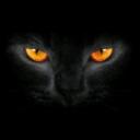 Foto del perfil de Kurss
